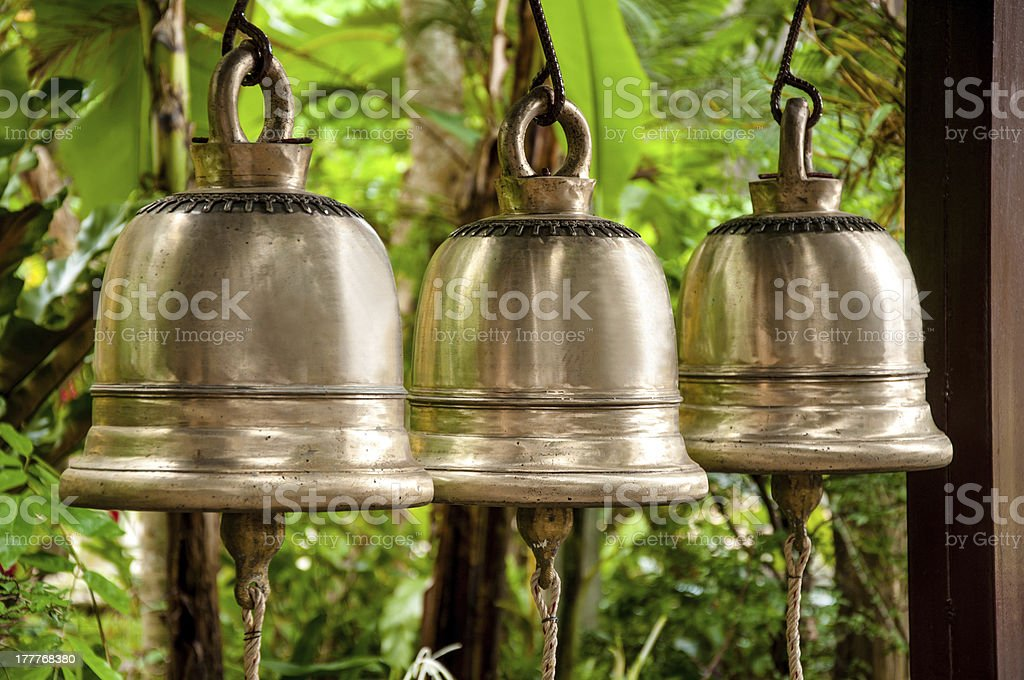 Tree silver bells royalty-free stock photo