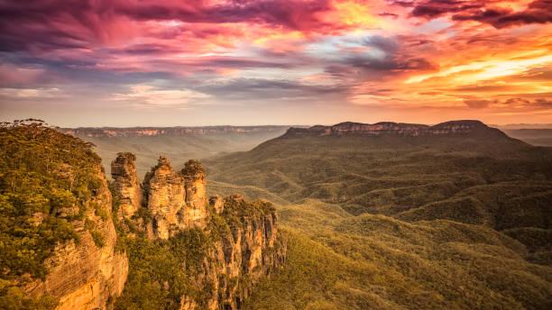Tree Sisters Blue Mountains Australia stock photo