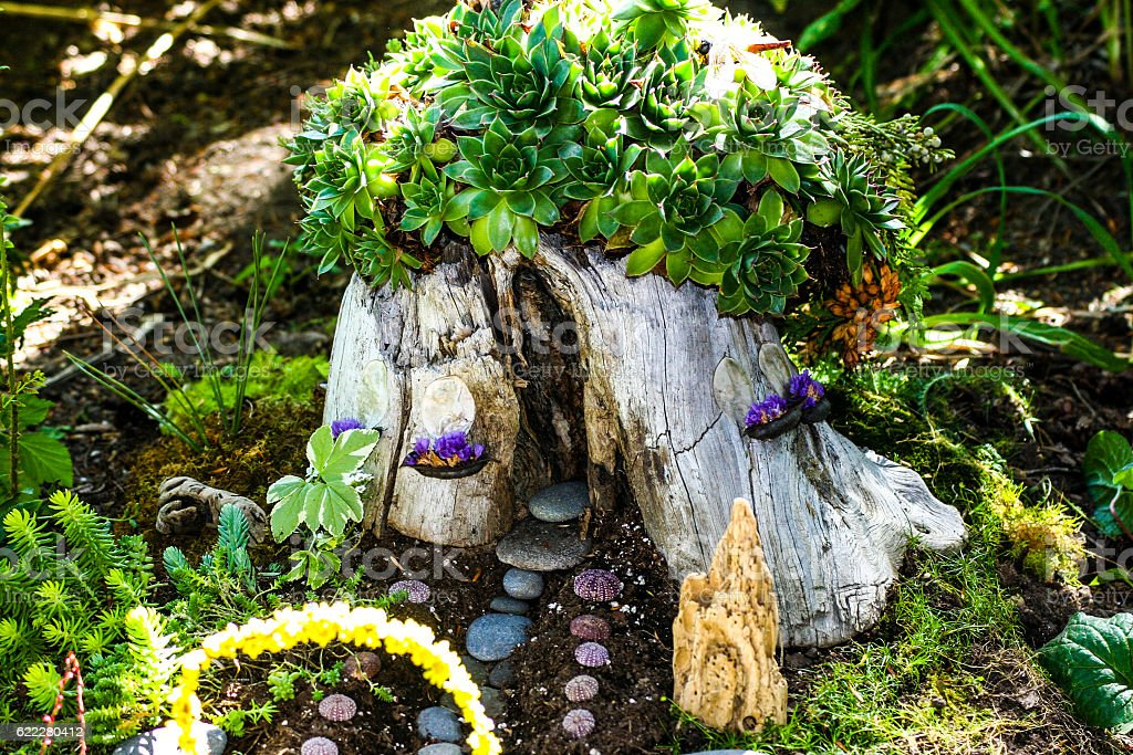 Tree Stump Fairyhouse with Succulents stock photo