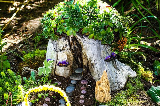 tree stump fairyhouse with succulents - fee stock-fotos und bilder