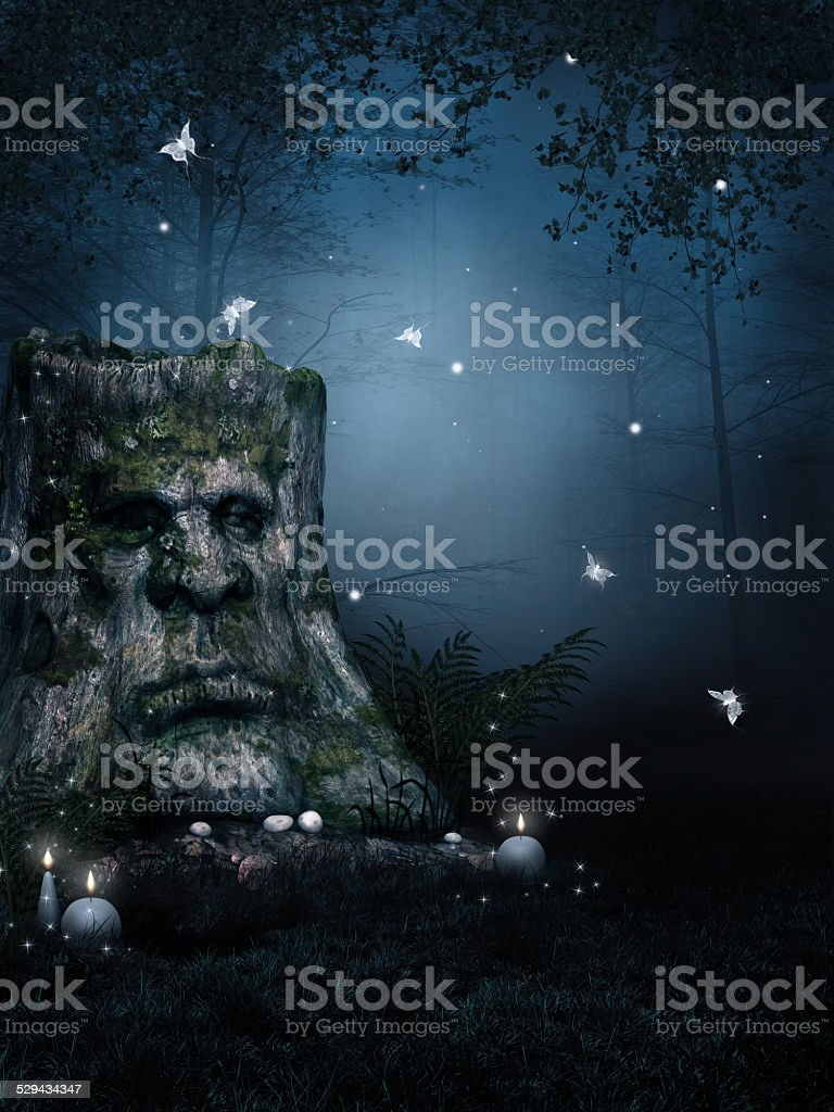 Old tree stump in an enchanted forest at night