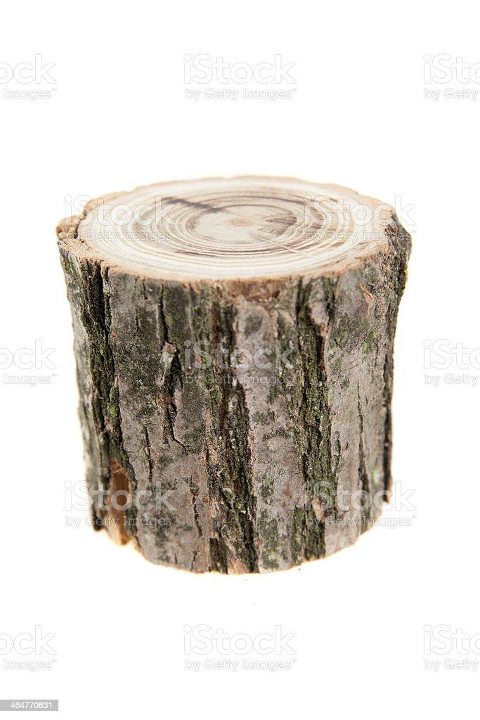tree stump, isolated on white stock photo