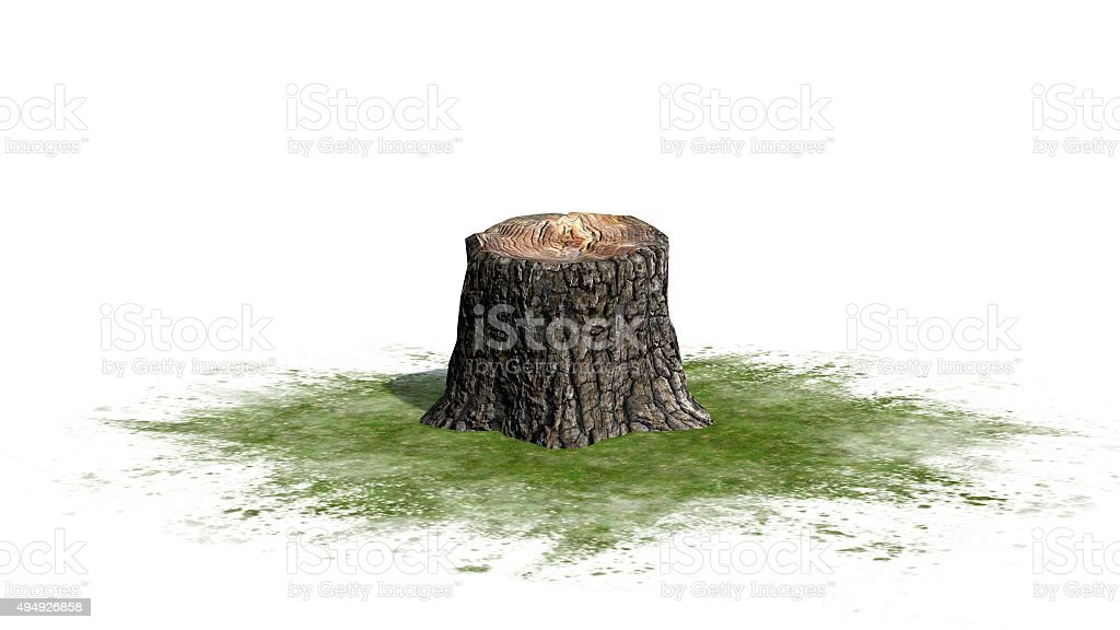 tree stump on green surface - on white background stock photo
