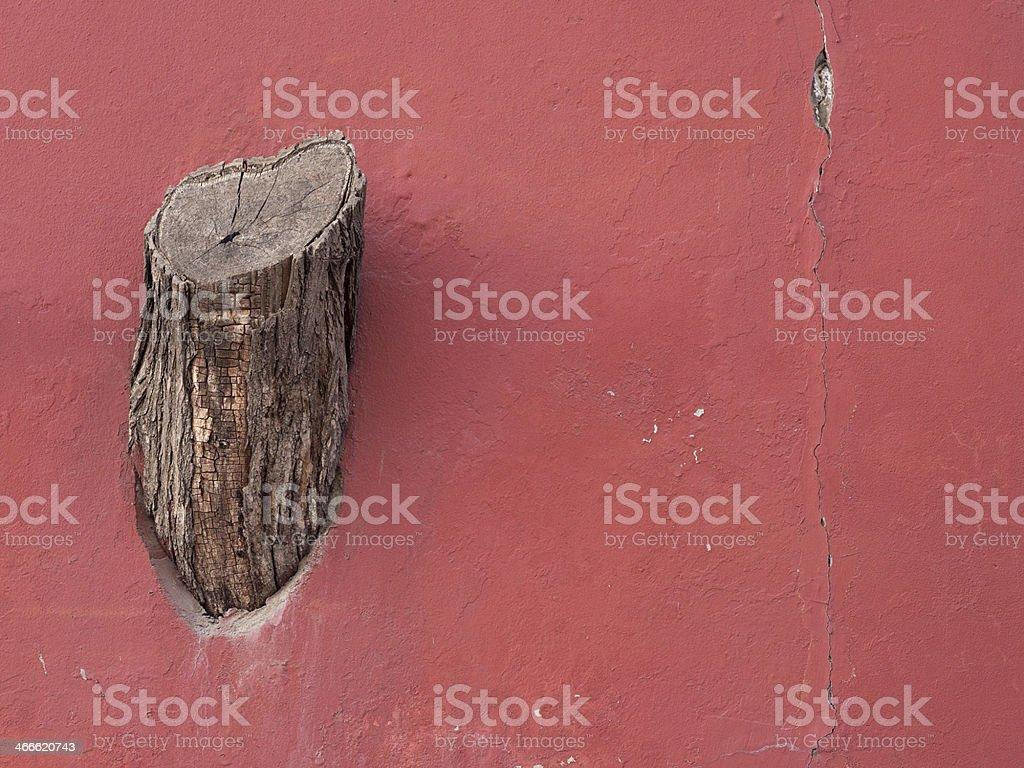 Tree stump on the wall stock photo