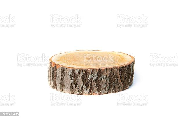 Tree Stump On White Background Stockfoto en meer beelden van Biologisch