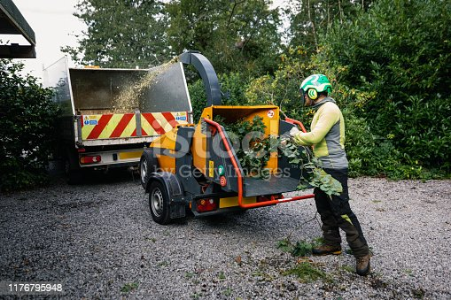 istock Tree surgeon wearing protective helmet pushing twigs and leaves into shredder 1176795948