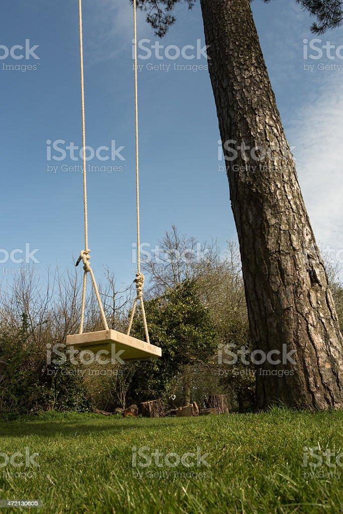 Tree Swing in the garden stock photo