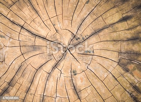 465559373 istock photo Tree timber texture for background. 476348394