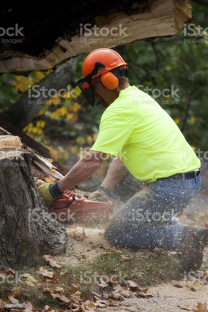 Tree Trimmer or Construction Worker royalty-free stock photo