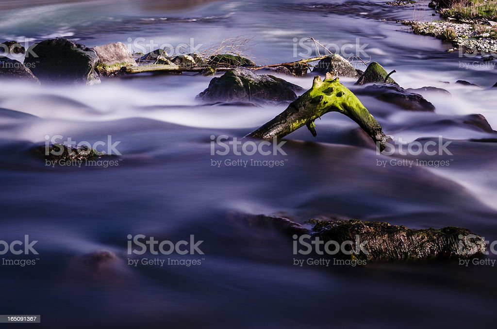 tree trunk covered by moss emerging from a waterfall royalty-free stock photo