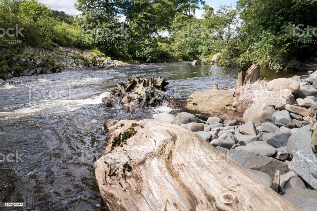 Boomstam in de rivier Lune moet speciale waterval foto