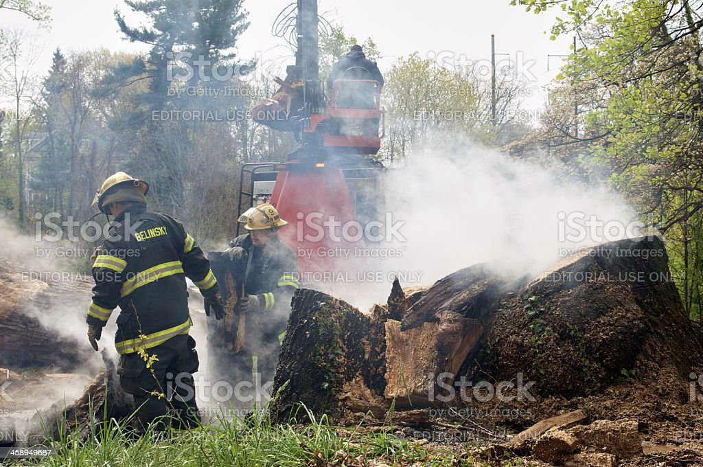 Tree trunk on fire stock photo
