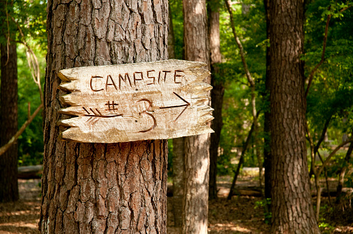 Tree trunk with wood sign and arrow to campsite 3