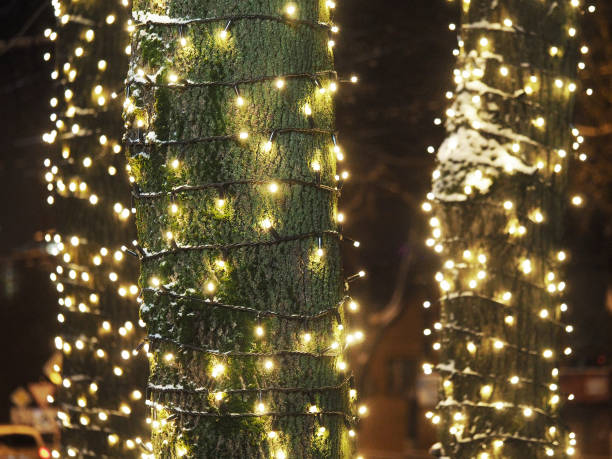 tree trunks wrapped with new year garlands street christmas decorations christmas light stock photo