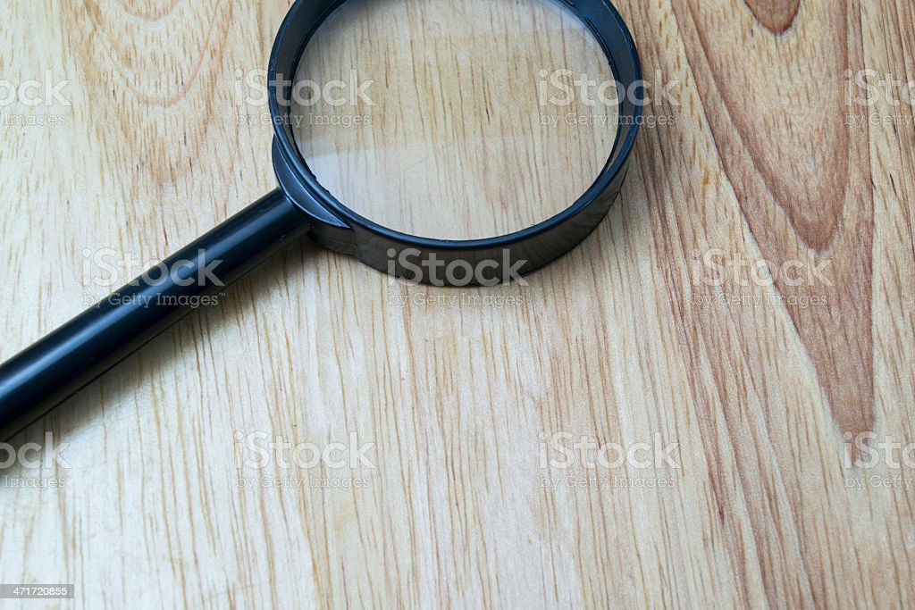 tree vein and magnify stock photo