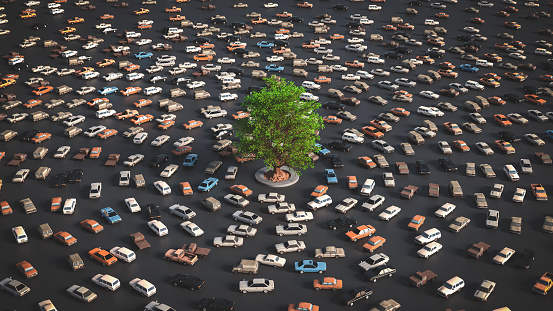 Tree vs traffic, environment concept