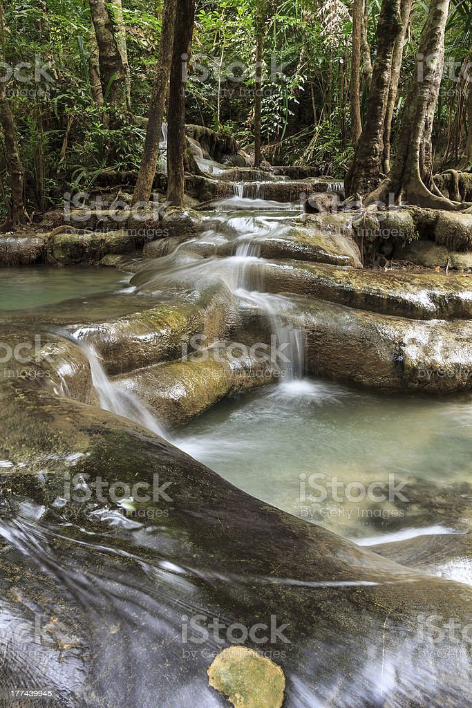 Tree waterfall royalty-free stock photo