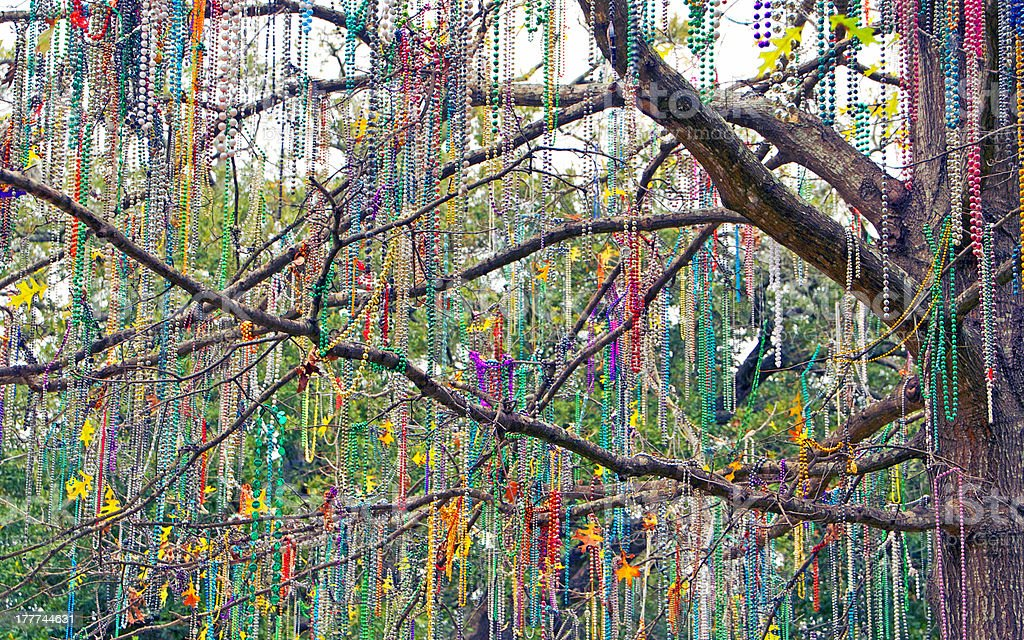 Tree Well-Dressed stock photo