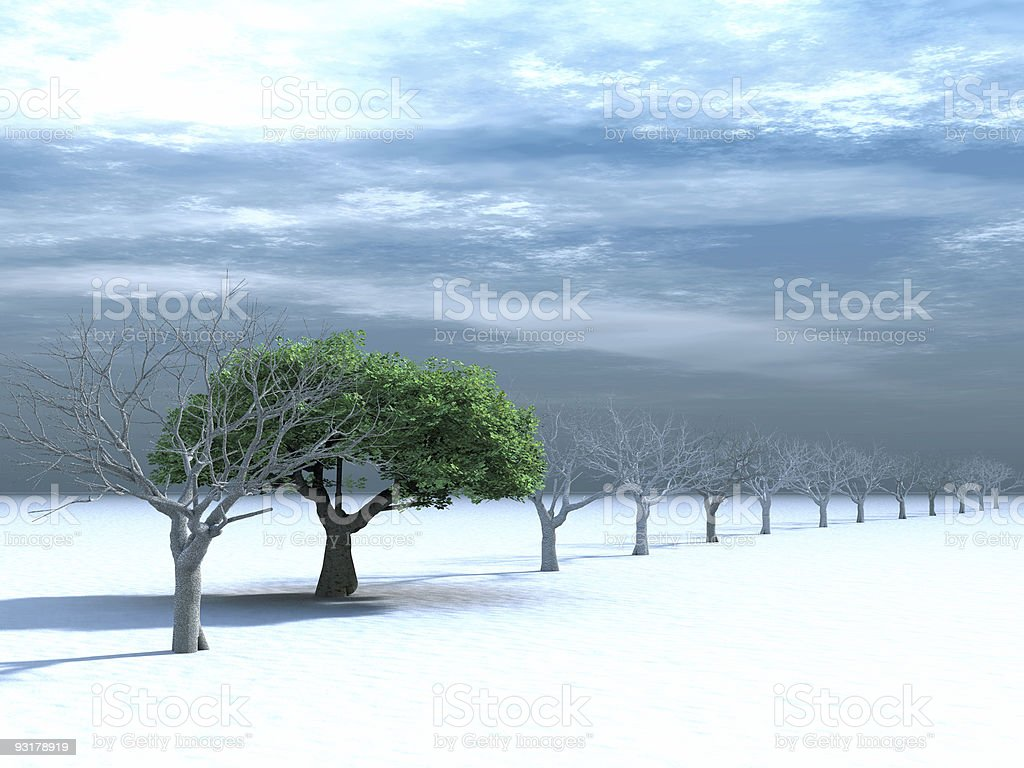 tree with a green foliage in surroundings naked trees royalty-free stock photo