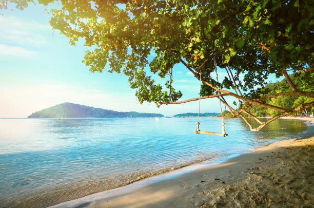 A tree with a swing on the shore of a tropical beach. A gentle dawn on the sea shore. Relax in the journey. A tree with a swing on the shore of a tropical beach. A gentle dawn on the sea shore. Relax in the journey koh chang stock pictures, royalty-free photos & images