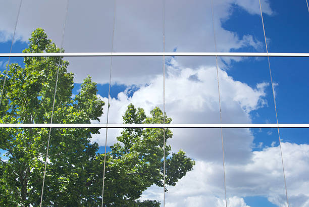 tree with cloud filled sky reflected in office building glass stock photo
