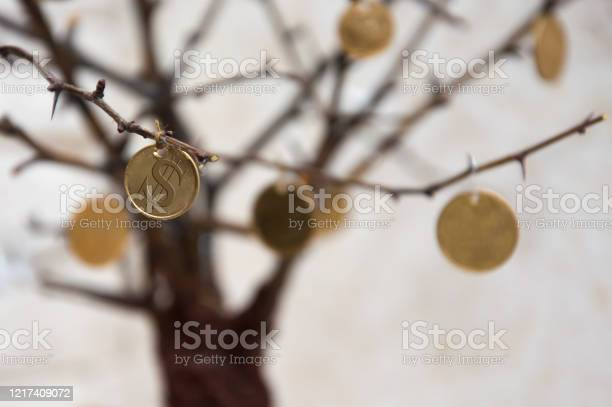 Tree with coins on the branches economic consequences economic crisis picture id1217409072?b=1&k=6&m=1217409072&s=612x612&h=vcok1e mbyypd0vkbho2ucd5kpgmf2us89 sxp23ge8=