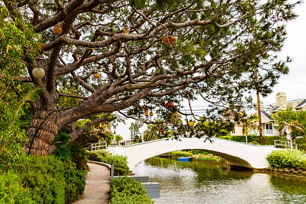 Tree with Ornaments, Bridge over Venice Canal, Los Angeles stock photo