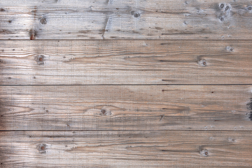 Tree wood pattern old nature table board design background