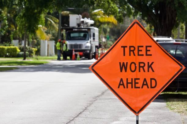 ağaç iş öncesinde işareti - kesmek stok fotoğraflar ve resimler