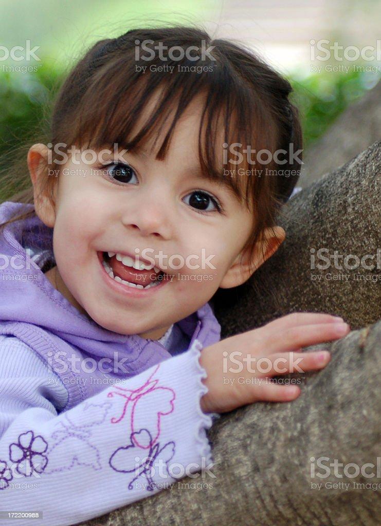 Tree-climber 2 royalty-free stock photo