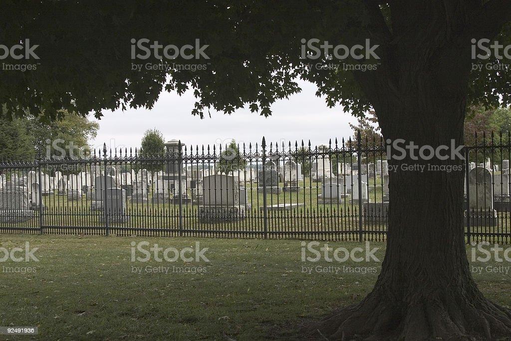 Tree-framed Cemetery royalty-free stock photo