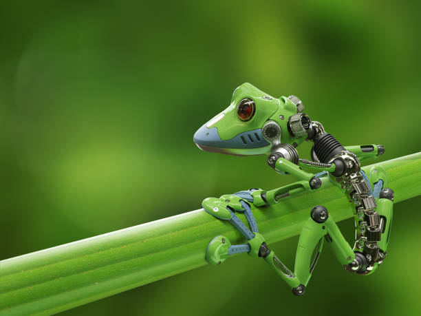 treefrog robot stock photo