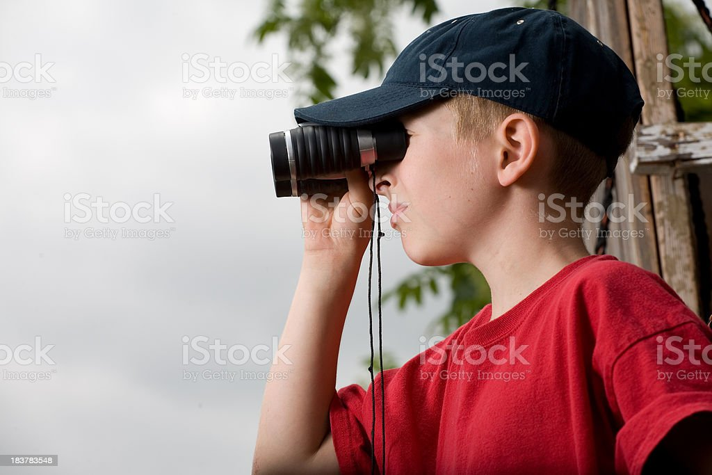 Treehouse Lookout stock photo