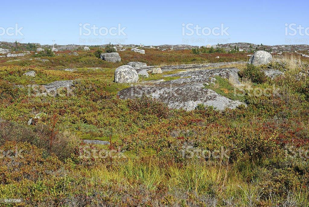 Baumlos Landschaft – Foto