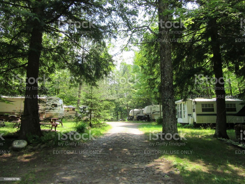 Tree-lined path with camping trailers in woods stock photo