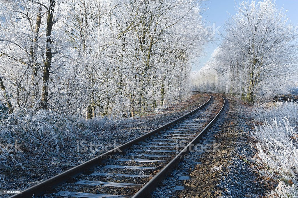 Treelined Railroad Tracks in the Frost (XXL) royalty-free stock photo
