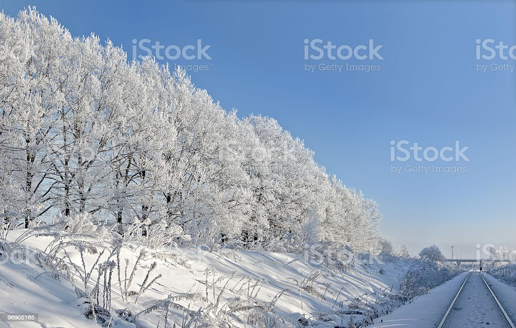 Trees against the blue sky. Railway royalty-free stock photo