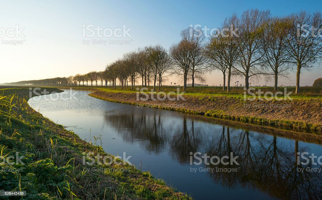 Trees along a canal at sunset in autumn stock photo