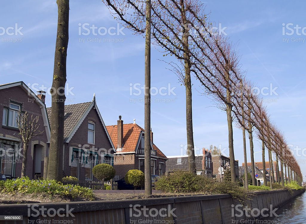 Trees along Canal royalty-free stock photo