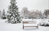 trees and benches covered with white snow, beautiful winter landscape, Ukraine, Kiev, December 14, 2018