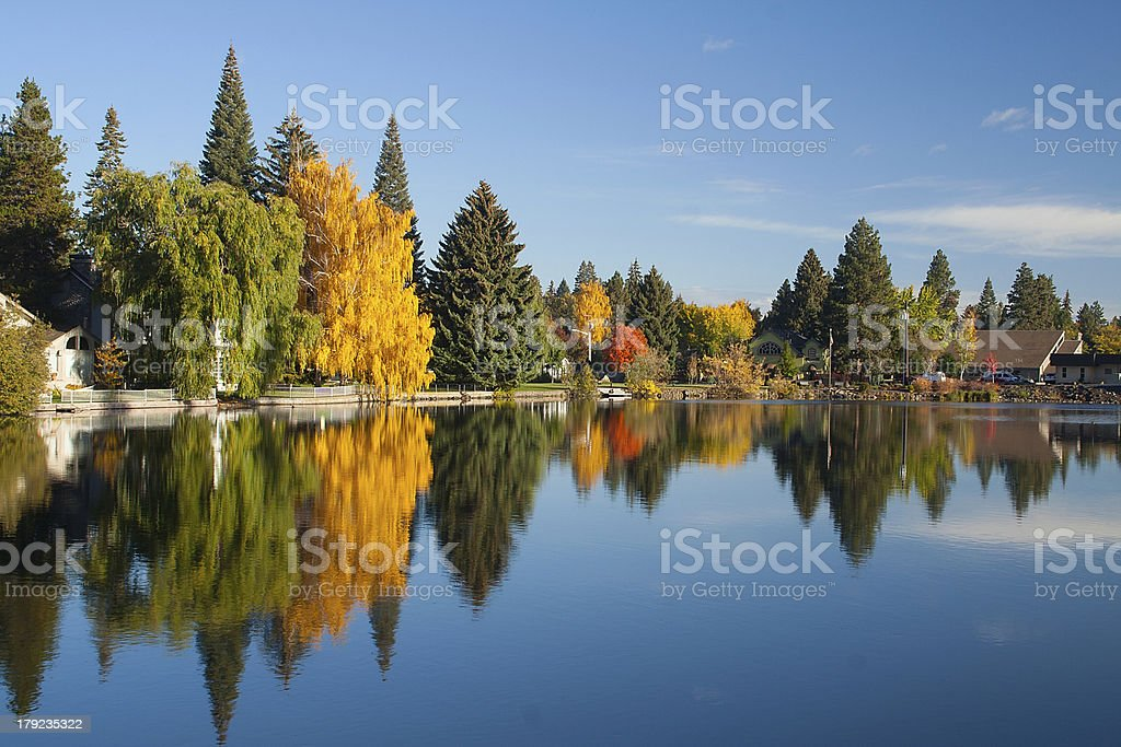 Trees and buildings reflected in lake stock photo