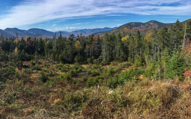 IMG_8594 Trees and mountains - White Mountains - New Hampshire stock photo