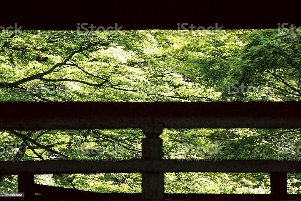 Trees and parapet,Japan stock photo