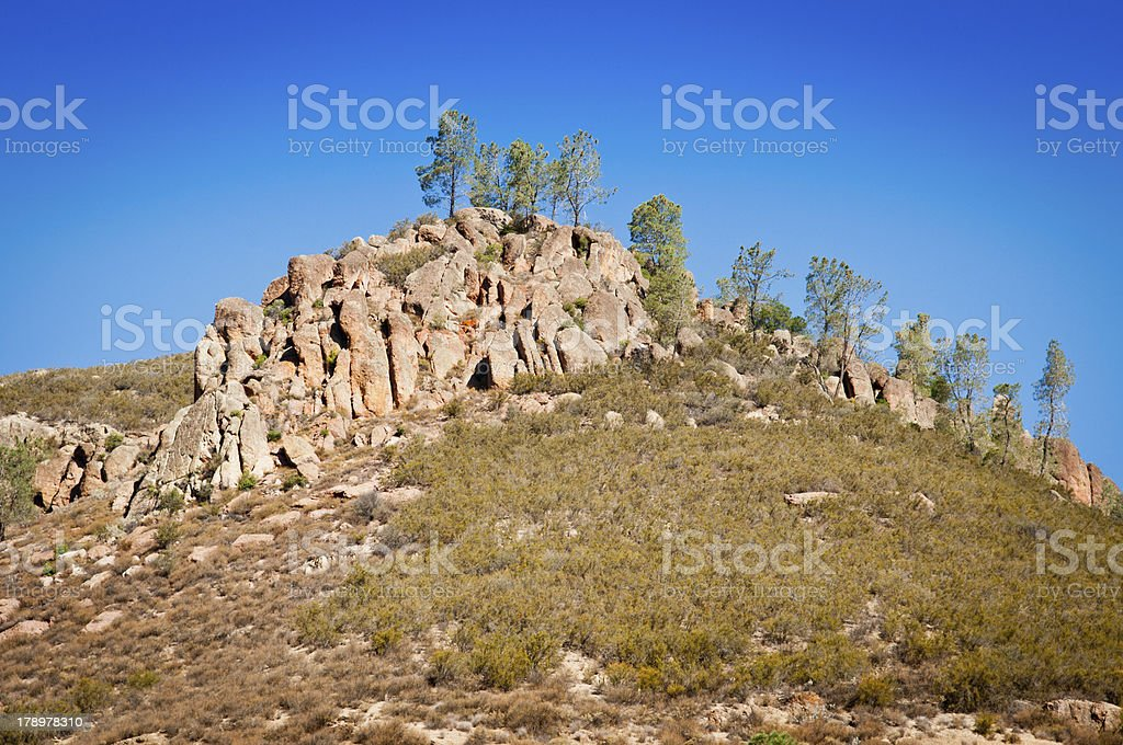 Trees and Peaks stock photo