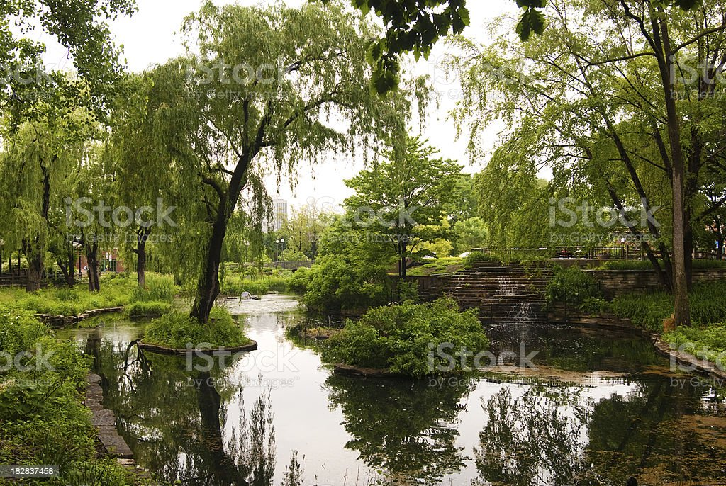Trees and pond at Lincoln Park Zoo in Chicago, IL stock photo