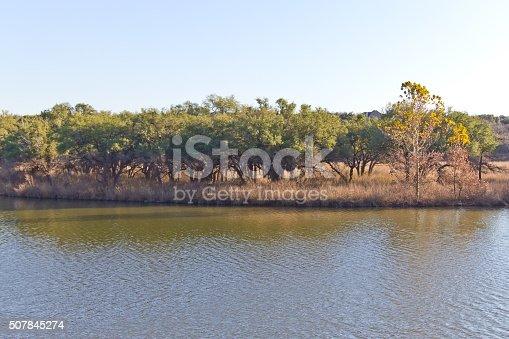 istock Trees at Brushy Creek Regional Trail 507845274