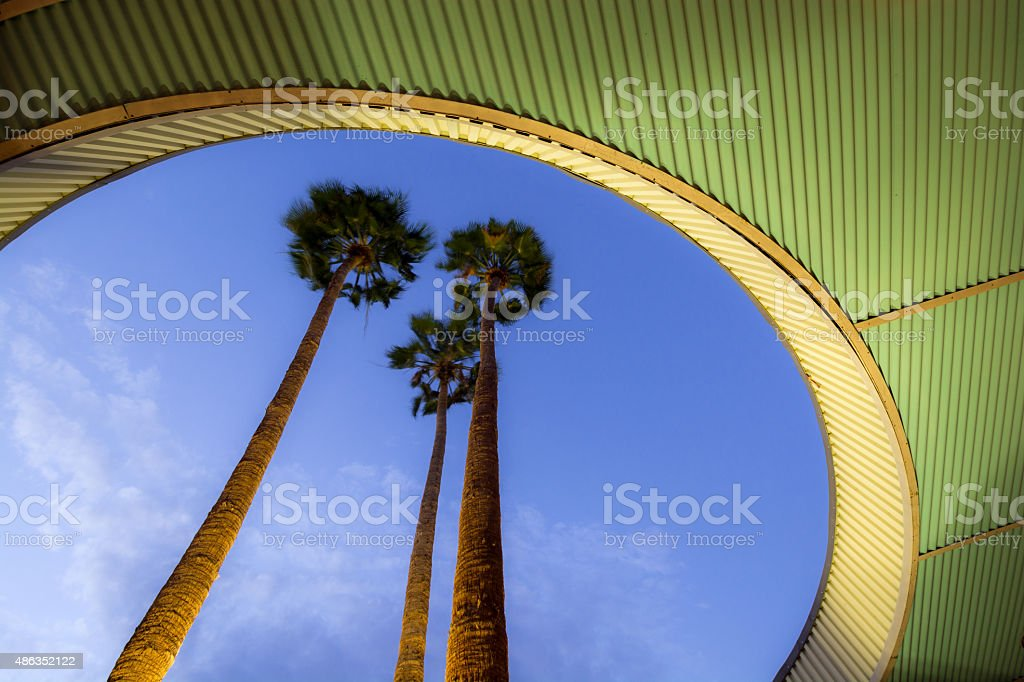 Trees at City Hall in Palm Springs, CA stock photo