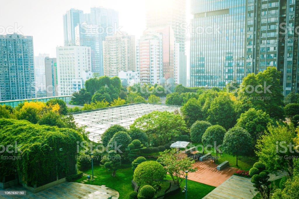 Trees between Office Buildings stock photo
