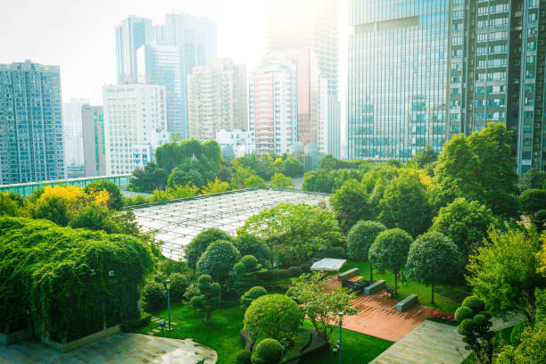 trees between office buildings - green color stock pictures, royalty-free photos & images