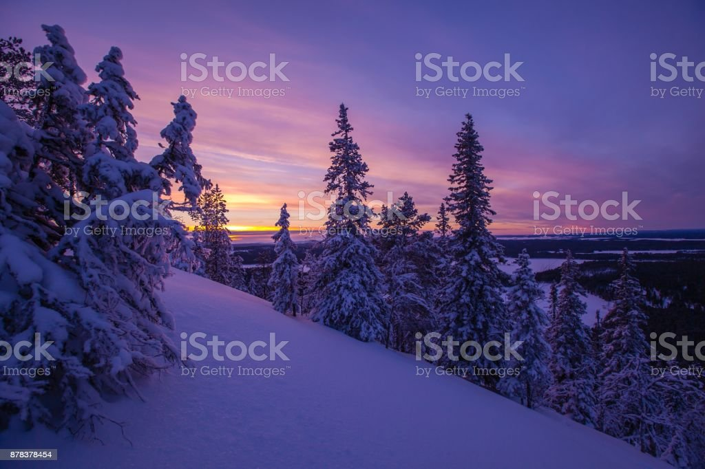 Trees covered with hoarfrost and snow in winter mountains stock photo